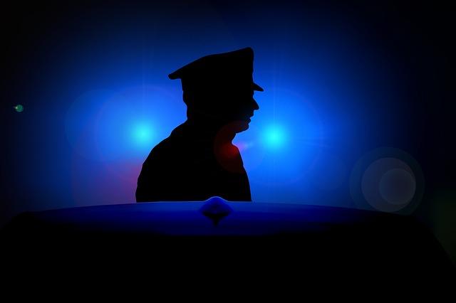 """ההיגיון העומד מאחורי דו""""חות משטרה הוא העניין שהם אמורים להרתיע, להפנות את תשומת הלב ולחדד – מה מותר ומה אסור, וכן להעניש את עברייני התנועה ואת העבריינים בכלל"""